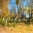 Golden autumn in a park — Stock Photo