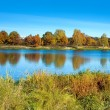 Autumn scenery with river — Stock Photo #35535369