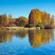 Autumn scenery with river — Stock Photo