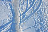 雪に覆われたトラック — ストック写真