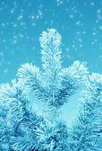 Christmas fantasy — Stock Photo