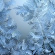 Frosty natural pattern on winter window — Stockfoto