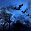 Halloween picture with bats — Stockfoto