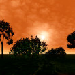 3d beautiful landscape with tree. Sunset — Stock Photo