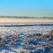 Winter river Volga — Stock Photo