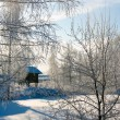 Winter russian country — Stock Photo