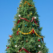 Christmas tree — Stock Photo #36017469