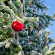 Christmas tree — Stock Photo #36017491