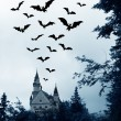 Halloween. Night. Moon, castle and bats. — Stock Photo #36019441