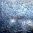 Frosty fine pattern of nature — Foto Stock