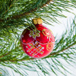 Glass ball on christmas tree — Stock Photo #36019727