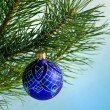 Glass ball on christmas tree — Stock Photo #36019813