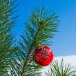Glass ball on christmas tree — Stock Photo #36019829