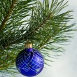 Glass ball on christmas tree — Stock Photo