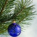 Glass ball on christmas tree — Stock Photo