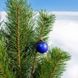 Glass ball on christmas tree — Stock Photo #36019985