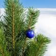 Glass ball on christmas tree — Stock Photo #36019985