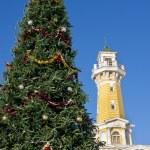 weihnachten-tannenbaum — Stockfoto