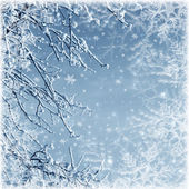Winter texture — Stock Photo