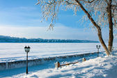 Winter park — Foto de Stock