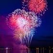 Colorful fireworks — Stockfoto