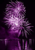 Colorful firework in a night sky — Stock Photo