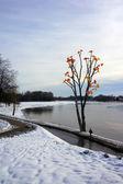 Paisaje de otoño-invierno — Foto de Stock