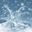 Winter scenery, snowstorm — Stock Photo #36419353