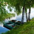 Scenery with river and forest — Stockfoto
