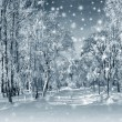 Winter scenery, snowstorm — Stock Photo #36419747