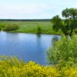 Stock Photo: Small Rivers of Russia