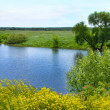 Small Rivers of Russia — Stock Photo #36419955