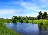 Kleine Flüsse in Russland — Stockfoto