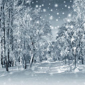 Winter scenery, snowstorm — Stock Photo
