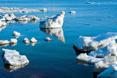Beautiful nature, ice — Stock Photo
