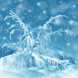 Winter scenery, snowstorm — Stock Photo #36420079