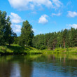Scenery with river and forest — Stock Photo