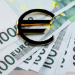 Stock Photo: Money euro