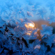 Texture of nature - ice on glass — Stock Photo #36808513