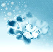 Lindas flores azul inmist — Fotografia Stock