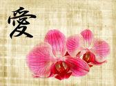 Beautiful pink orchid and hieroglyph love — Stock Photo