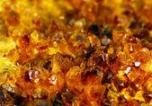 Texture of nature - golden gem — Stock Photo