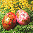 Fir tree  and easter egg — 图库照片