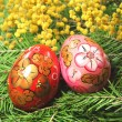 Fir tree  and easter egg — Stock Photo