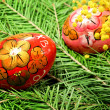 Fir tree  and easter egg — Stockfoto