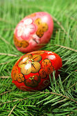 Fir tree and easter egg — Photo