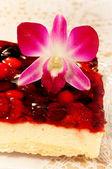 Lecker Käsekuchen mit Blume Orchidee — Stockfoto