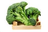 Zeleninové zelí brokolice — Stock fotografie
