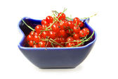 Sweet berries red currant — Stock Photo