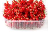 сладкие ягоды красной смородины — Стоковое фото